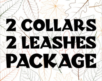 2 Collars and 2 Leashes Package | Any Print