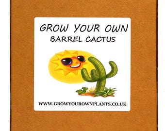 Grow Your Own Barrel Cactus Plant Kit - Unusual Birthday or Christmas Gardening / Gardeners Gift