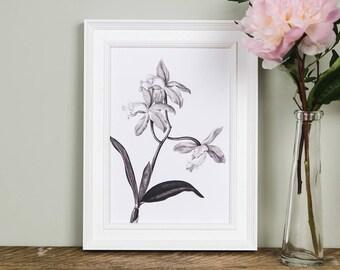 Botanical Wall Art botanical print set | etsy