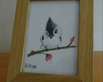 Hand painted Wild bird collection - Tufted Titmouse chick