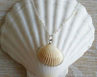 Boho Sea Shell Necklace