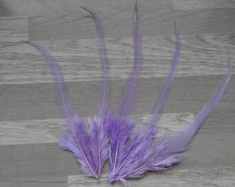 Set of 20 lilac dyed Rooster feathers