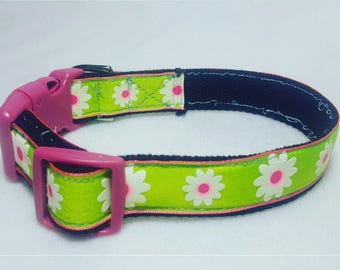 Green W/White daisy dog collar- Medium