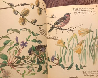 The Country Diary of an Edwardian Lady by Edith Holden Nature Illutrations Paintings 1977 Hardback