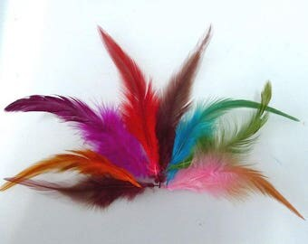 PROMO * set of 100 assorted natural feathers 213