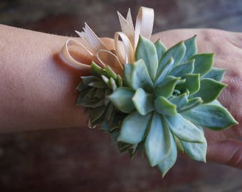Elegant Succulent Wrist Corsage with Real Succulent (Fully Customizable)