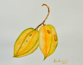 Star Fruit Art, Original watercolor paintings, Botanical illustrator, Fruit art, Gift, Home decorate, size 8 x 11.5 inches [ A 4 ]
