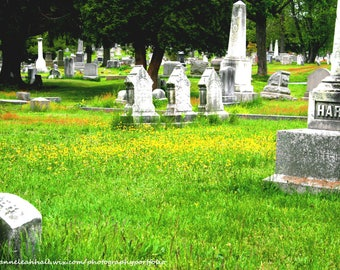 Historic Cemetery, Old Graveyard, Headstones Gravestones, Green Grass Landscape Outdoors Photo, Digital Download, Wallpaper Screen Saver