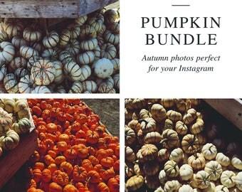 Autumn Pumpkin Stock Photo Bundle | Instagram photos | Fall Stock Photography