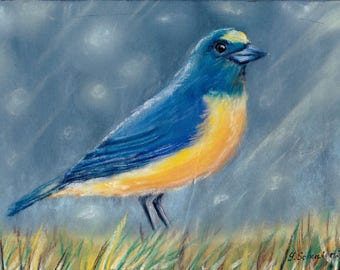 Bird n1. Original pastel painting on sandpaper . Using artists' quality pastels