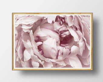 Peony Wall Art flower print flower wall art flower printable wall decor