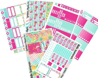 Hello Summer  | Planner Functional Stickers | Premium Matte Vinyl or Glossy Planner Stickers!