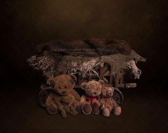 Newborn Digital backdrop / background / vintage cart / teddy bears /  Girl or Boy