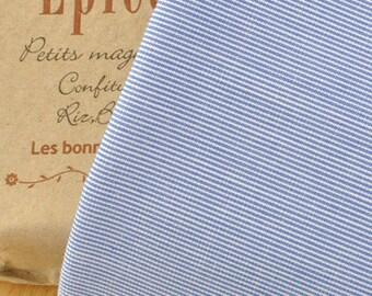 Blue Stripe Cotton Fabric MT055