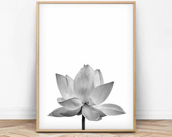 Lotus Print, Flower Wall Art, Floral Wall Decor, Flower Photography, Black and White Photo, Spring Print, Spring Decor, Botanical Print