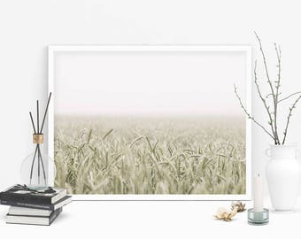 Poster print wheat fields photography