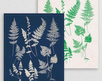Classic Fern X- Botanical Decor- Botanical Gifts- Prints for Decor- Botanical Art- Ferns- Nature -Vintage -Vintage Prints -Vintage Art