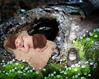 Digital Background, Newborn Background, Sitter Backdrop, Old Log Background, Forest Background, Lantern Light, Boy Backdrop