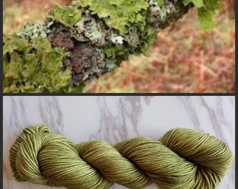 Hand Dyed Yarn, Merino, DK Weight Tonal Yarn, Perfect for Hats, Scarves, Sweaters and all Winter Accessories - Lichen