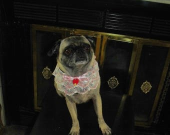 Faux Leather Dog Collar with Pink Lace