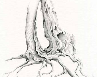 Graphite tree illustration original graphite illustration 11x14 size matting Free Shipping