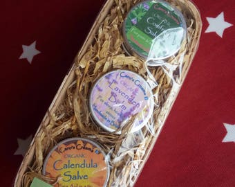 Natural Herbal First Aid Salves Gift Set