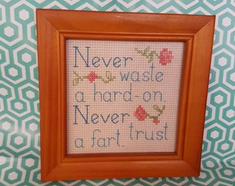 Never Waste a Hard-on. Never Trust a Fart framed cross stitch