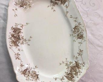 "Johnson Brothers Brown Begonia Semi Porcelain 14"" platter"