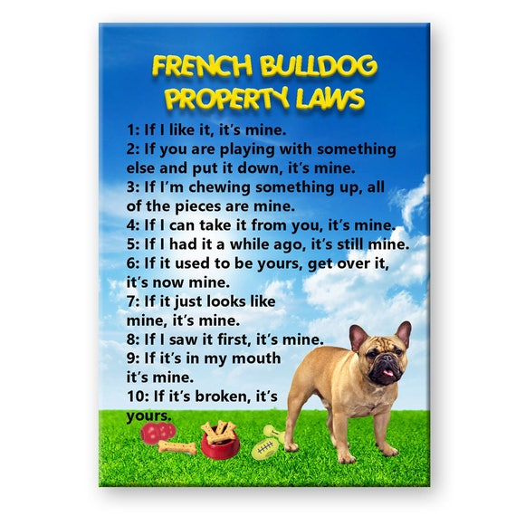 French Bulldog Property Laws Fridge Magnet No 3
