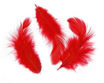 Red loose feather sizes vary