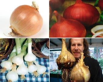 Onions (4 Variety)