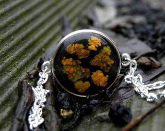 Resin moss charm bracelet, orange lichen, Real plant bracelet, Moss bracelet, Nature resin jewelry, Nature Lovers gift, terrarium jewelry