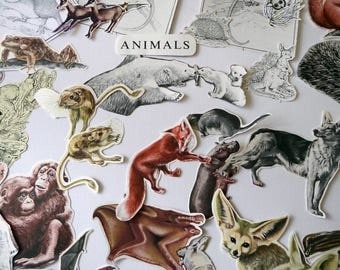 Vintage scrapbooking pack, 45 paper clippings of animals, paper craft kit, paper embellishments, die cuts