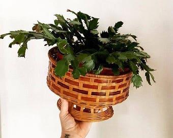 Vintage - Wicker - Pedestal Basket