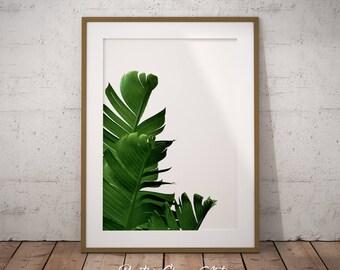Banana Leaf, Banana leaves, Banana Leaf Print, Palm Leaf Print, Tropical Leaf Print, Banana Leaf Art Poster, Printable Banana Leaf Decor