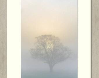 Framed Fine Art Photograph, fine art paper, fog, foggy, atmospheric, glow, framed, photograph, photography