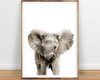 Elephant Digital Print, Baby Animal Wall Art, Nursery Decor, Instant Download Printable Art, Digital Download Printable Digital Art Download