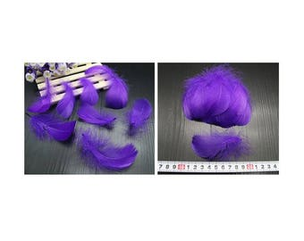 Set of 5 small purple feathers