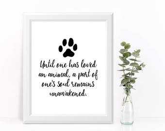 """CAT ART PRINT """"Until one has loved an animal, a part of one's soul remains unawakened."""""""