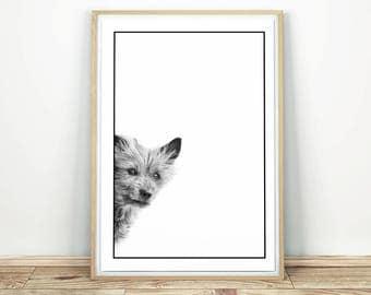 Curious Dog - Printable Art, Dog Print Art, Animal Print, Wall Art, Dog Print, Dog Wall Art, Printable Nursery, Nursery Decor, Dog Decor