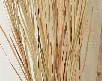 Ornamental grass etsy for Tall grass decor