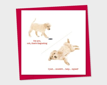 fox poo, yellow labrador puppy