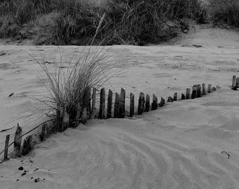 Beach Fence Print     05017-0033