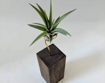 Handmade Wooden Air Plant Stand - Home Accent - Unique Gift - Wedding Decor - Air Plant Holder