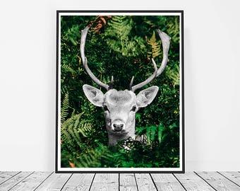 Deer Print, Digital Download, Printable Art, Deer Art, Animal Print