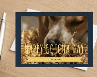 Beagle Dog Happy Gotcha Day Greetings Card