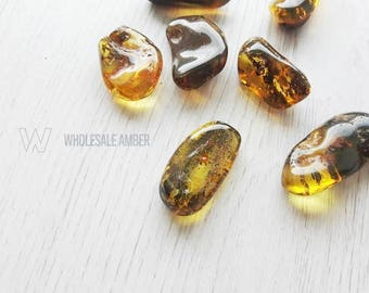Wholesale amber stones. Natural genuine amber pieces. Craft supply. Loose stones. 7 pieces. SM34