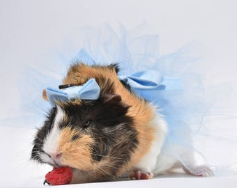 Guinea Pig / Rabbit / Bunny / Pet outfit / Costume for Small Animals