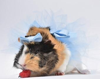 Guinea Pig, Rabbit, Small Animal Tu Tu and Bow