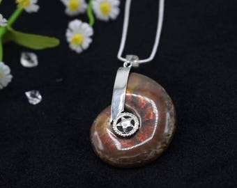 Large Ammonite Fossil Pendant Ammonite Jewelry Necklace Paleontology Silver Plated jewelry Gemstone